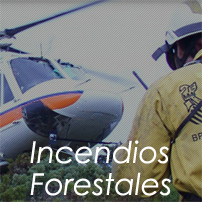 Incendios Forestales mini